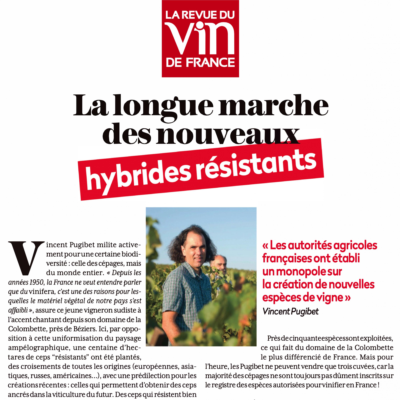 Article les Echos sur les pionniers de la viticulture.